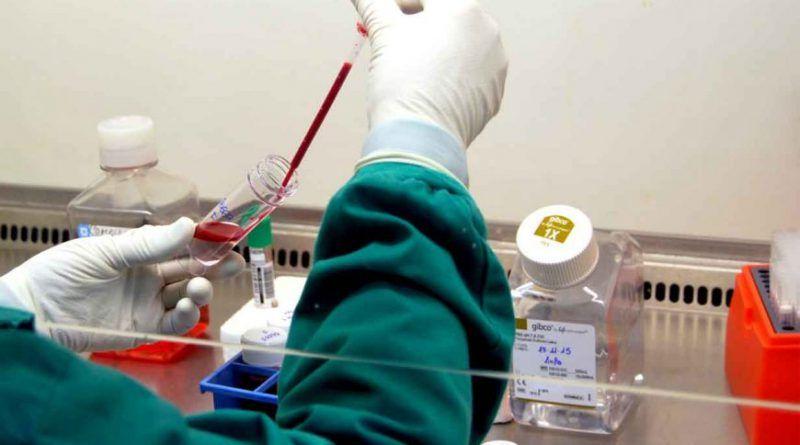 Confirmaron un nuevo caso de leishmaniasis en la provincia: Piden tomar «medidas de prevención»